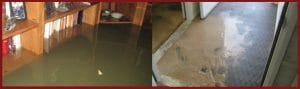 sewage damage cleanup