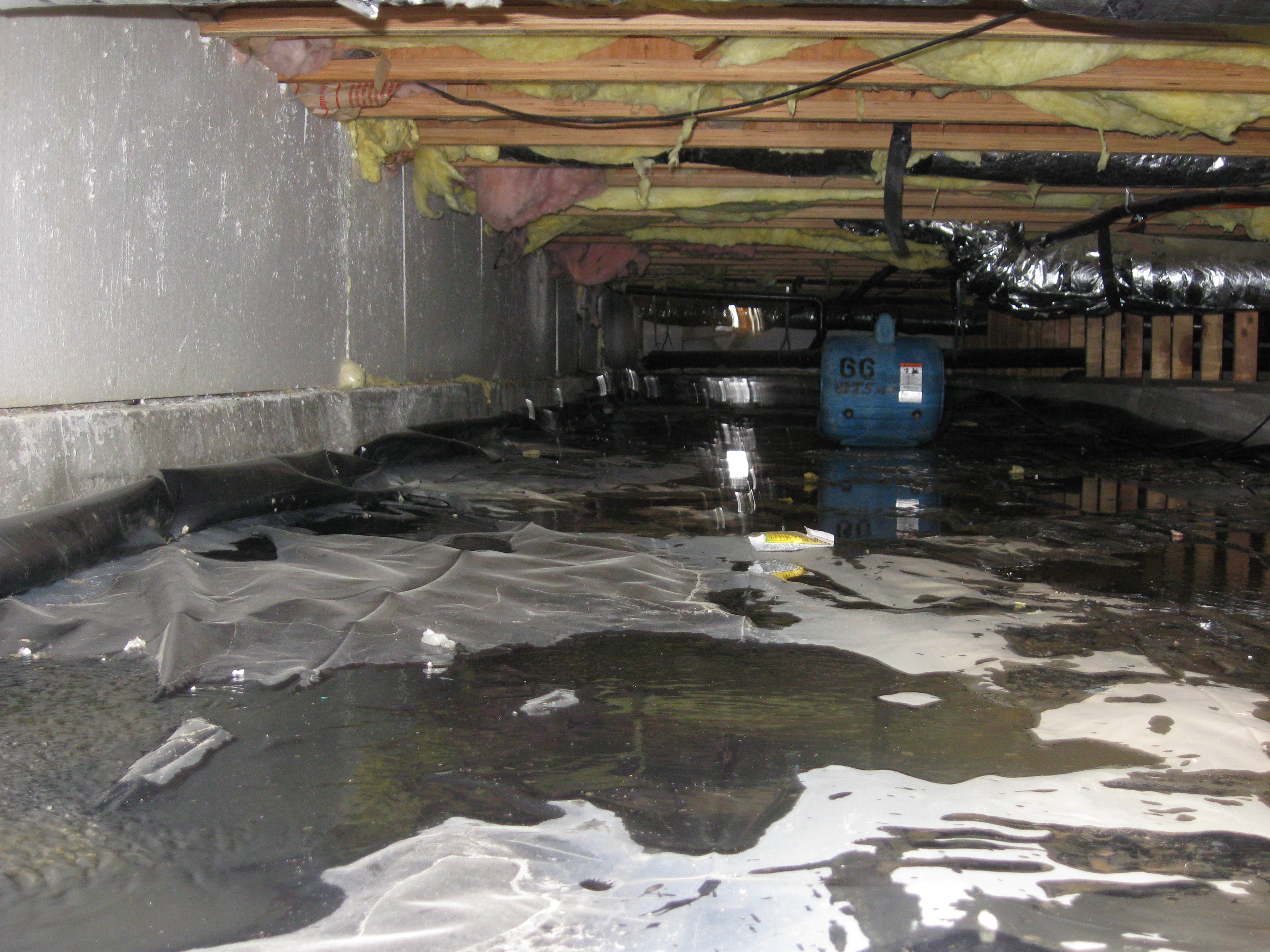 water-in-crawlspace Who To Call When Basement Floods